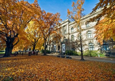 The museums building in autumn