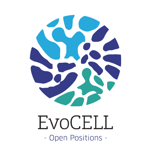 8 Short-term Early Stage Researcher positions available through the EvoCELL ITN