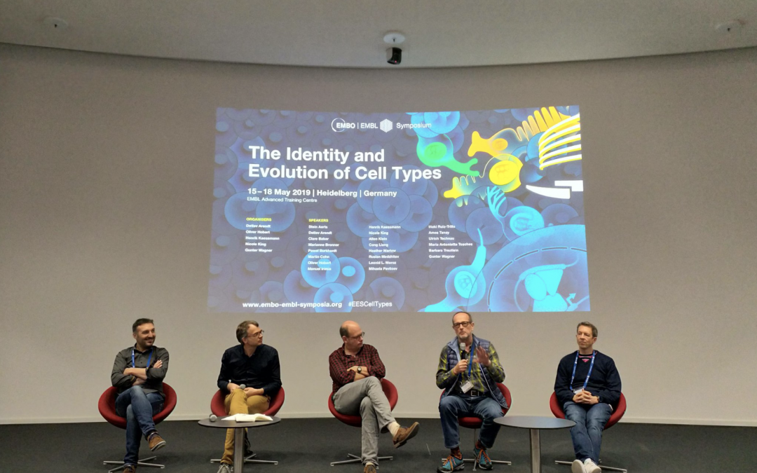 What a conference: The Identity and Evolution of Cell types